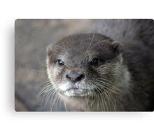 I Otter ... Canvas Print