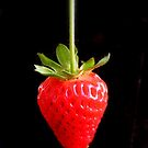 The Strawberry by liberoliber