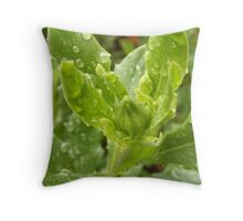 New Bud Dripping Throw Pillow