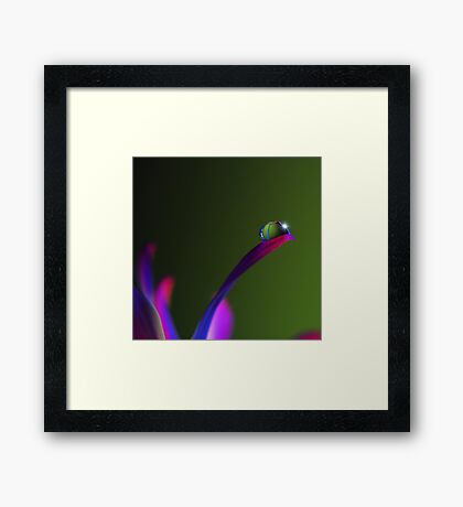 PINK Collection for the Cure - Lifited Spirits  Framed Print