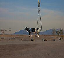 Desert giant cow... by Gili Orr