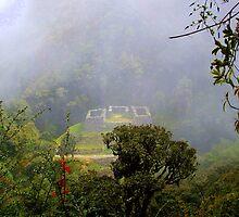 Inca Site in the Mist by Honor Kyne