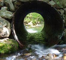 A river runs through it by funmom