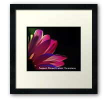PINK Collection for the Cure - Support Breast Cancer Awareness  Framed Print