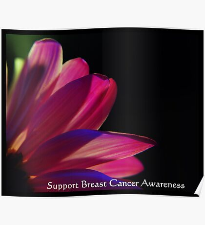 PINK Collection for the Cure - Support Breast Cancer Awareness  Poster