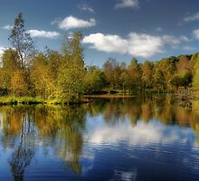 Queen Elizabeth Pond Reflections by Linda  Morrison