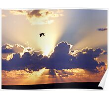 Sunrise Over The Gulf Of Mexico Poster