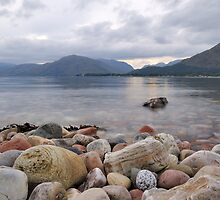 Loch Linnhe Rocks - 1 by Richard Ion