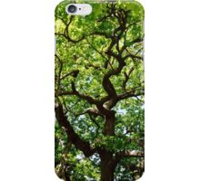 Occoquan Beauty iPhone Case/Skin