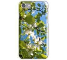 tree, blossom, spring iPhone Case/Skin