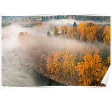 Fog in the Fall Poster