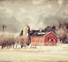 Sioux City Barn & Silo by BarnArtandMore