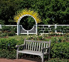 Garden Bench by Jim Caldwell