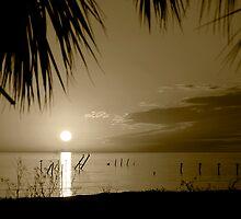 Sepia Sunset by Jonicool