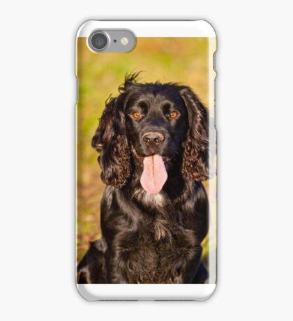 Black Cocker Spaniel iPhone Case/Skin