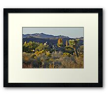 Joshua Tree National Park - A Landscape to Die For Framed Print