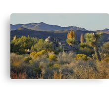 Joshua Tree National Park - A Landscape to Die For Canvas Print
