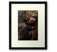 Prick Framed Print