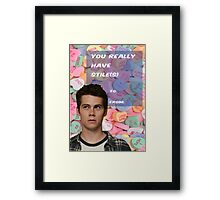 You Have Stile(s)! Framed Print