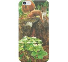 Off Course Encounter iPhone Case/Skin