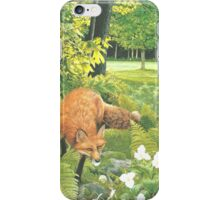 Sly Green iPhone Case/Skin