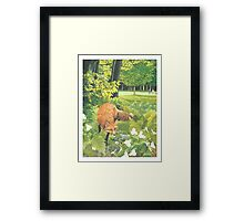 Sly Green Framed Print