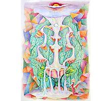 Sephirot. Tree of Life Photographic Print