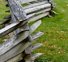 Fence Line by jenndes