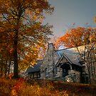 Fall, I by Mary Ann Reilly