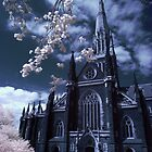 St. Patrick Cathedral in Infrared by Reynandi Susanto