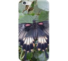 Butterfly 7 iPhone Case/Skin