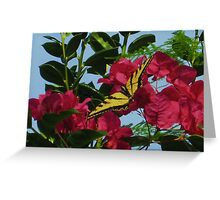 Tiger Swallowtail in Bougainvillea Greeting Card