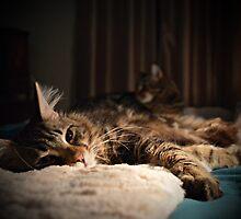 Relaxing in duplicate by spoilmesweetie