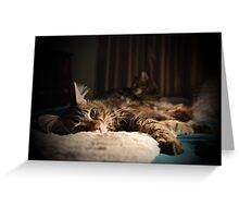 Relaxing in duplicate Greeting Card