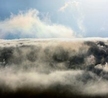 Love That Fog! by Laurie Puglia