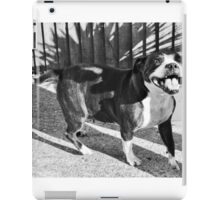 Smiling Dog iPad Case/Skin