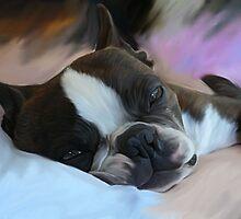 Sleepy... by Cazzie Cathcart