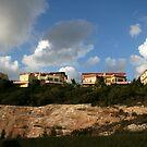 On the Hill... by Nira Dabush