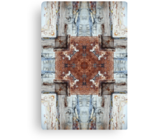 surrounded by light Canvas Print