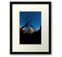 Kayenta Trail - Zion National Park Framed Print