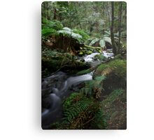 Arm River Metal Print