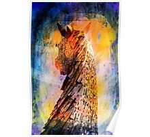 Kelpie in Colour Poster
