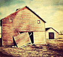 Simple Barn by BarnArtandMore