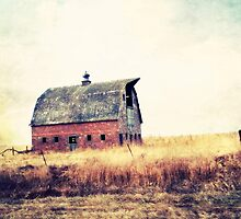 Clay Tile Barn ll by BarnArtandMore