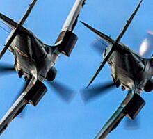 Two BBMF Spitfire PR.XIXs Sticker
