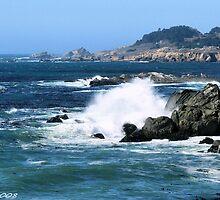 #578    Coastline Of Sonoma California by MyInnereyeMike
