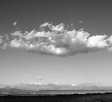 open range #1 by Erwin G. Kotzab