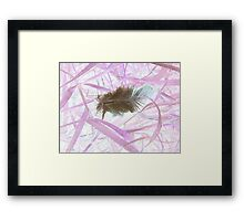 Attached Once Upon a time and Belonging to the Group Framed Print