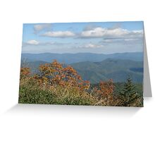Smokey Mountain National Park, view from Clingmans Dome Greeting Card