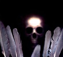 A skull with crows feathers by Mark Fearon